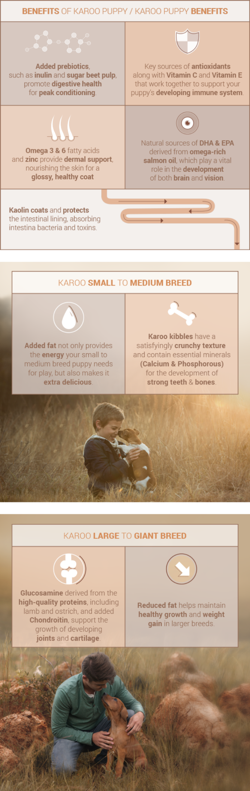 Benefits of Karoo Puppy