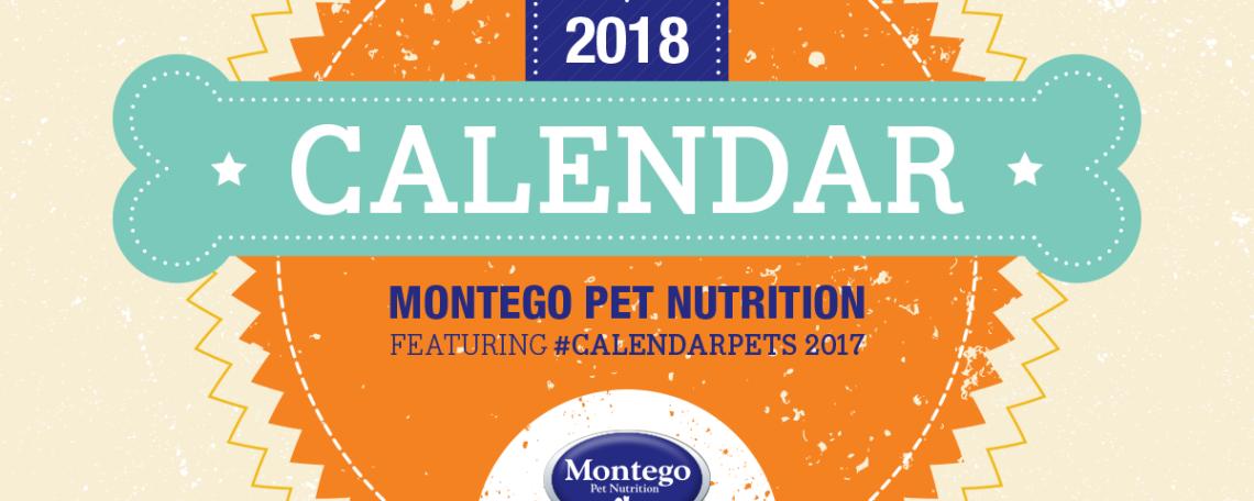 Calendar Pets 2017 Download