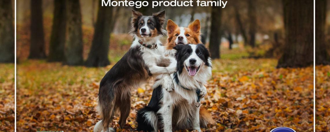 Montego Acquires WUMA!